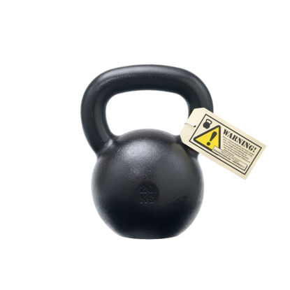 Bild von 20kg Dragon Door Military Grade RKC Kettlebell